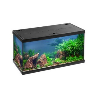 EHEIM aquastar 54 LED aquarium black ( 0340645 )